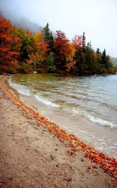 new england fall #fallcolors