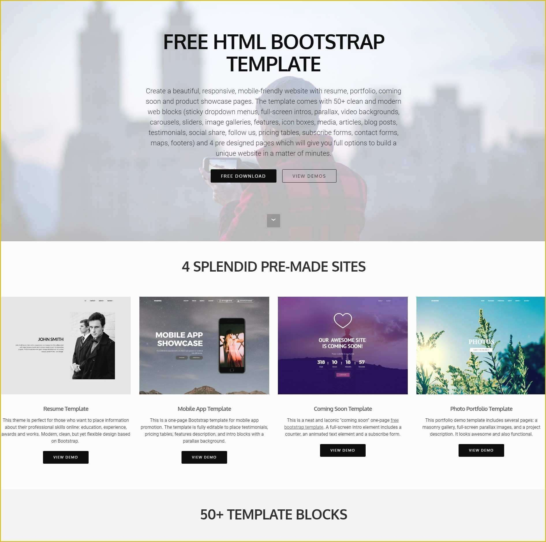 Html Business Templates Free Download with Css (With