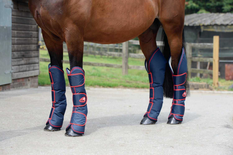 Die modischen #Transportgamaschen #1200D von #Masta kommen im 4er Set und sind ein stilvoller #Schutz für die #Pferdebeine. Die aus robustem Außenmaterial bestehenden #Gamaschen haben ein #Fleecefutter für den optimalen #Komfort. #englishequetstrian #english #equestrian #reiten #reiter #pferd #reitausrüstung www.englishequestrian.com