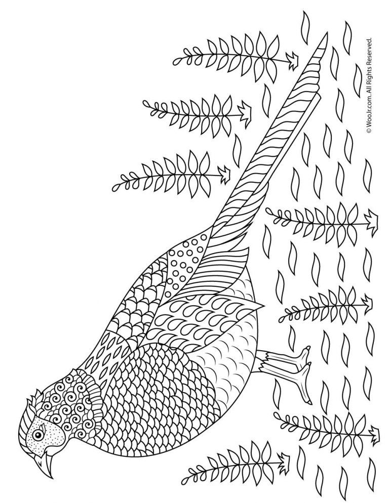 Fall Animal Adult Coloring Pages Adult Coloring Pages Coloring