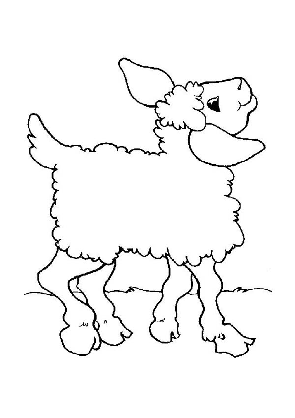 Dancing Lamb Coloring Page Coloring Sky Coloring Pages Online Coloring Coloring Pictures