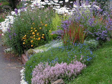 southern cottage garden - Google Search