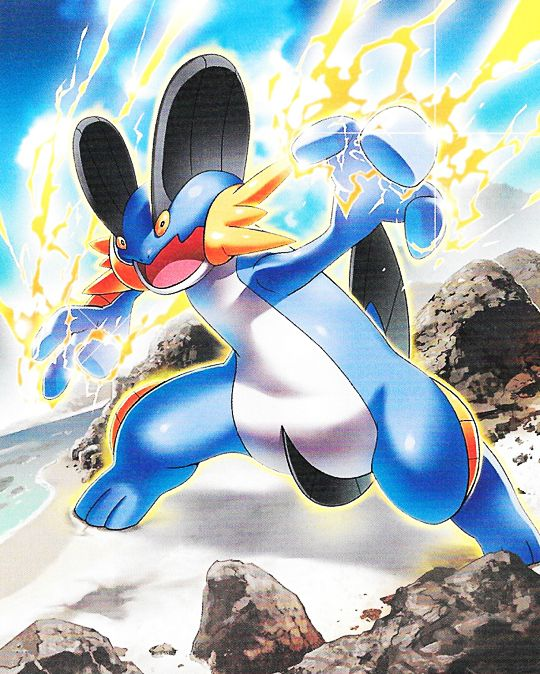 Image result for swampert pinterest