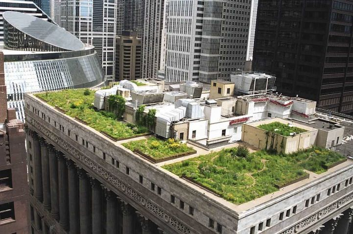 Chicago S City Hall Has Rooftop Garden With 20 000 Plants Roof Garden Design Green Roof Green Roof System
