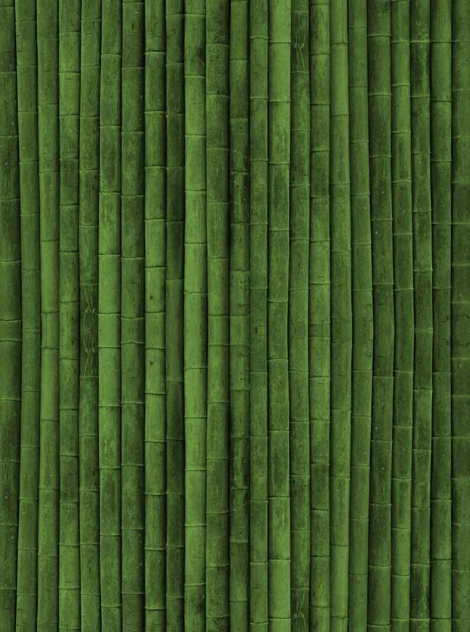 Printed Green Bamboo Backdrop 1487 Bamboo Wallpaper Bamboo