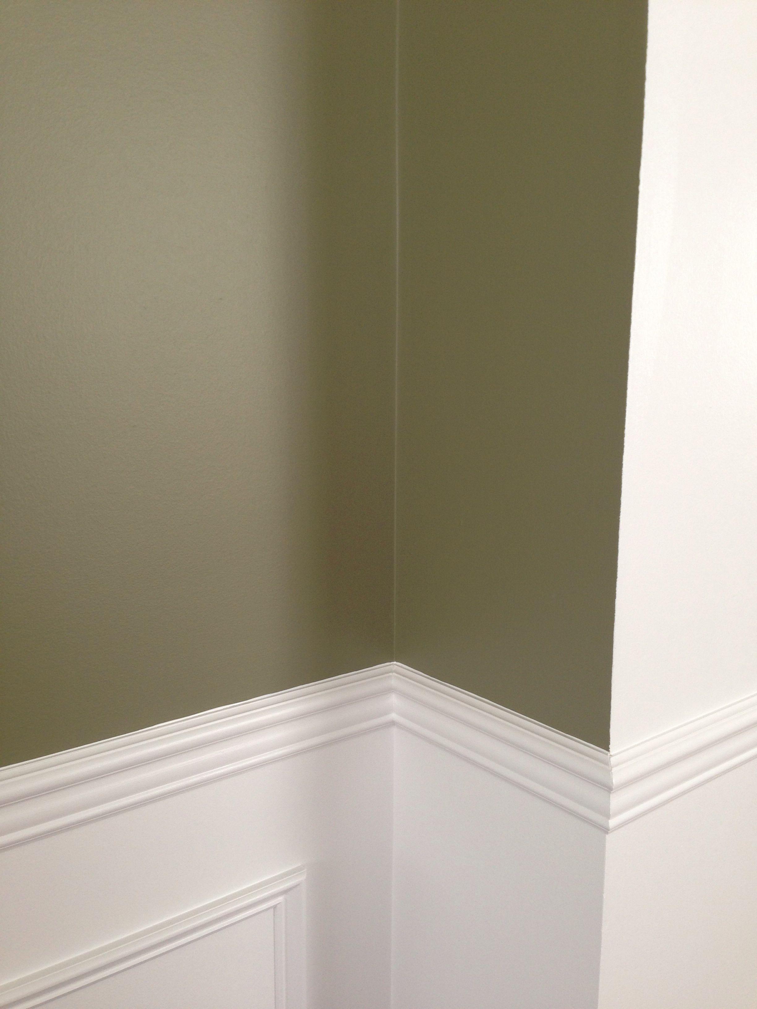 Benjamin Moore Wethersfield Moss Paint A Grayish Green
