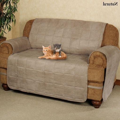 Extra Large Sofa Covers For Pets Couch Gallery Pinterest And