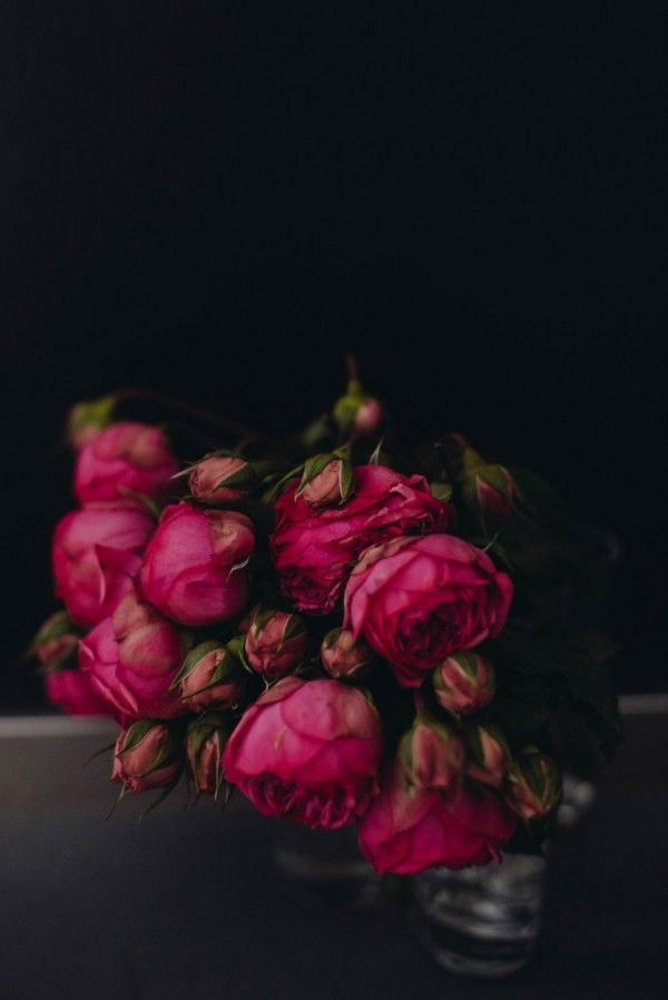 Inspired By Hot Pink And Black Moodiness Beautiful Flowers