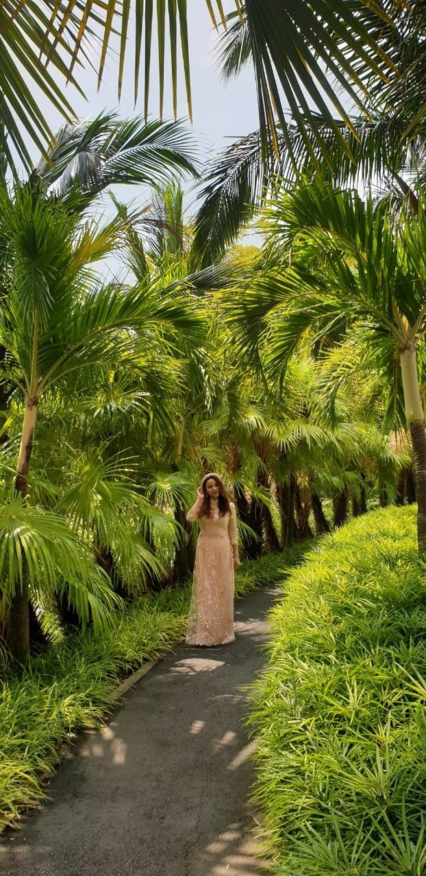 Garden by the bay Singapore Anna Luu