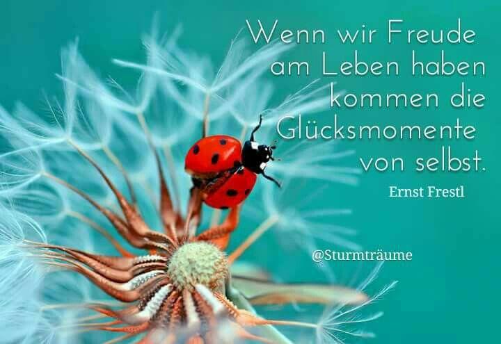 Ernst Ferstl Sprüche Zitate Lebensweisheiten Und Gedichte