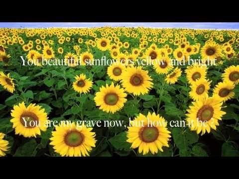 The Sunflower Fields Of Ukraine By Margaret Rees Sunflower Fields Sunflower Types Of Flowers