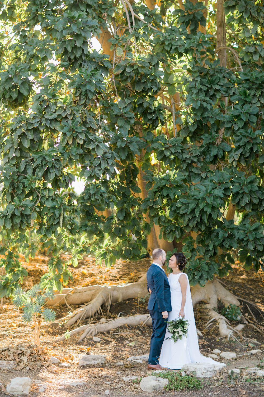 SOUTH COAST BOTANIC GARDEN WEDDING greenery natural bride