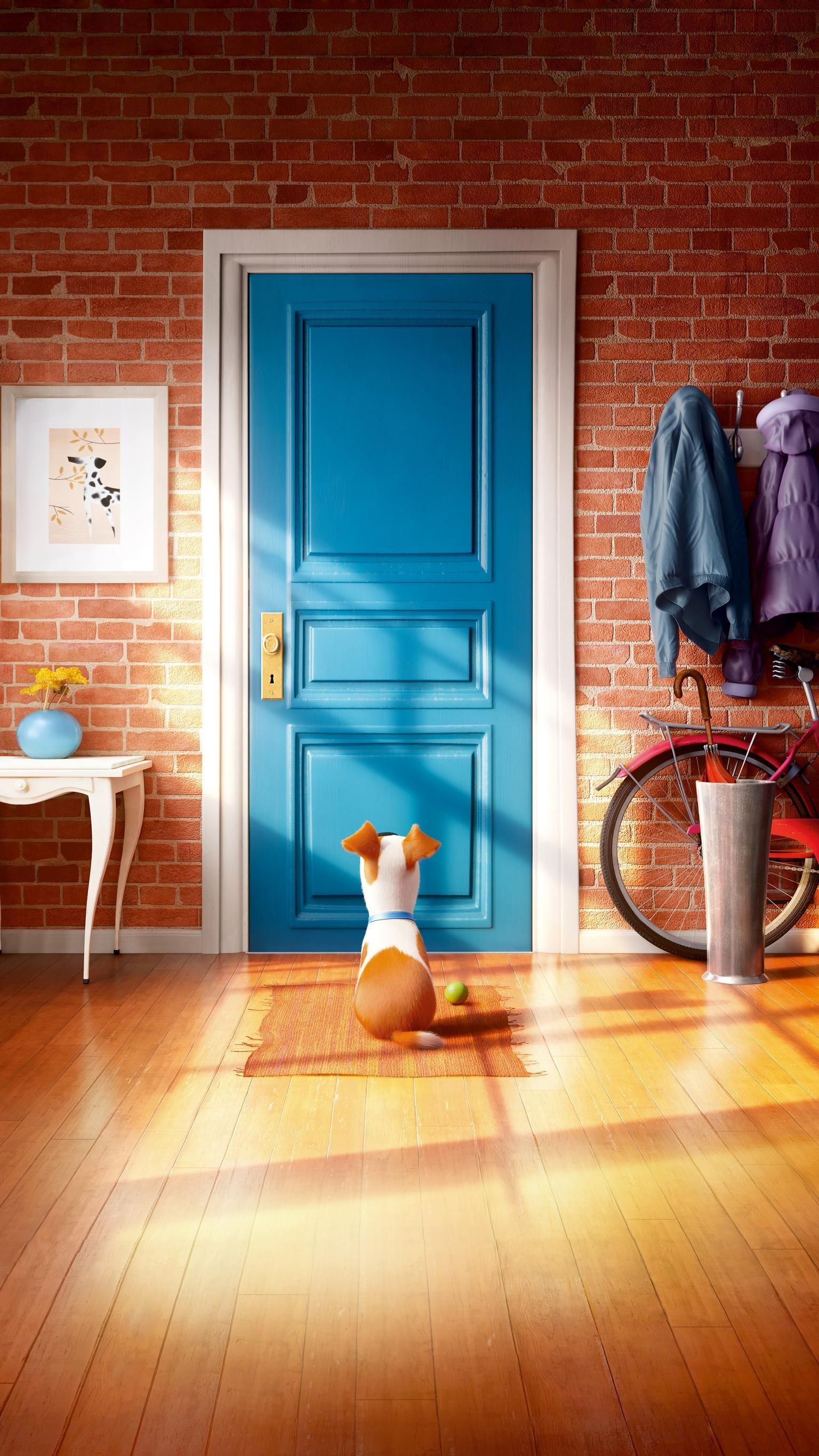 Das Geheime Leben Der Haustiere 2016 Phone Wallpaper Geheime Haustiere Leben Phone Wa Niedliche Hintergrundbilder Disney Zeichnungen Hintergrundbilder