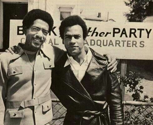 Seal Newton Black Panther Party Black Panthers Movement Black History