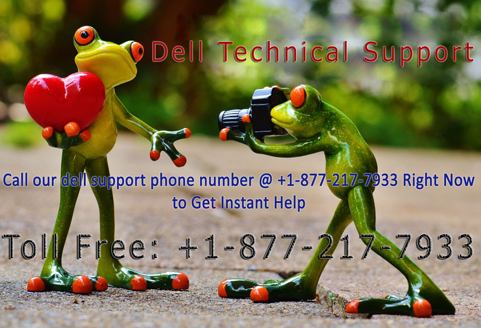 Are you looking for dell help number, dial our toll-free 1-877-217-7933 number we have team of best technicians to fix your Dell products problem including software issues, networking problem, wireless connectivity error, antivirus problem and virus removal related technical issues.
