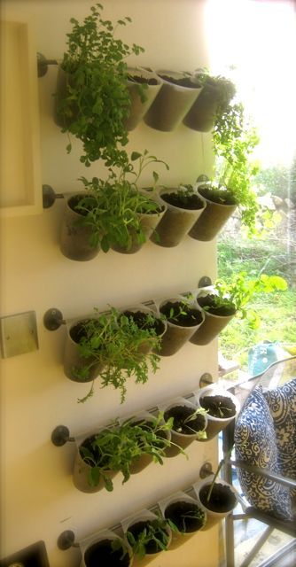 Bygel by ikea used to make a garden for herbs and small plants. Just ...