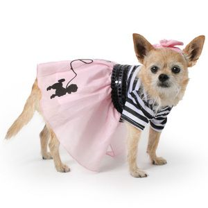 50 S Girl Dog Costume With Timeless Stripes On The Top And A Pink
