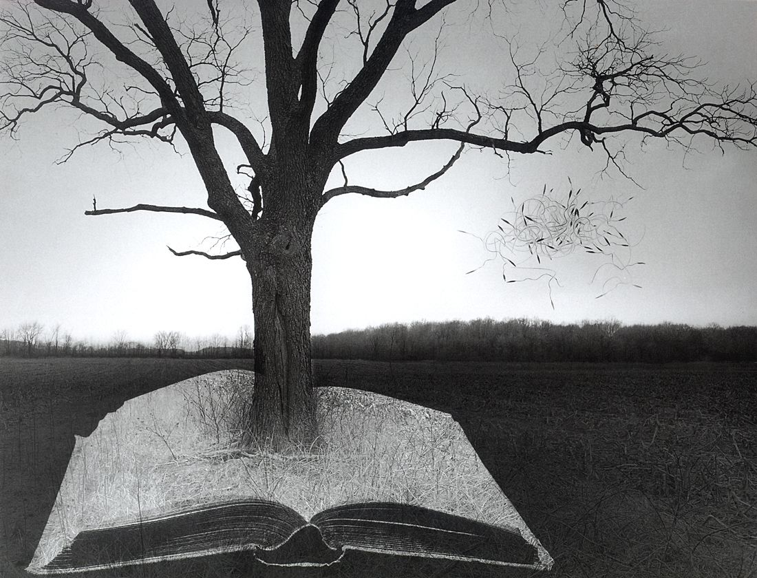 """the life and work of jerry uelsmann a photographer Here's a selection of my favorite quotes by photographer jerry uelsmann """"photography is just light remembering itself"""" – jerry uelsmann """"the camera is a license to explore."""