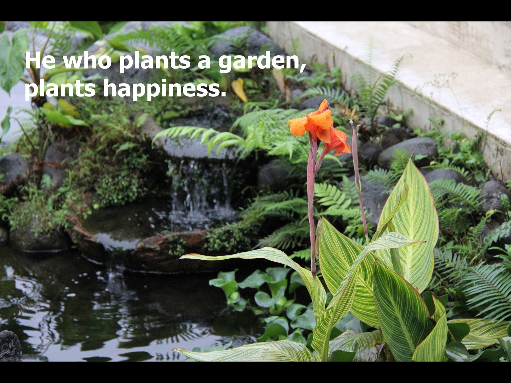 He who plants a garden, plants happiness.