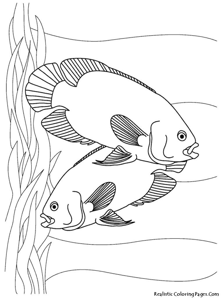 Aquarium Fish Printable Coloring Sheet With Images Animal