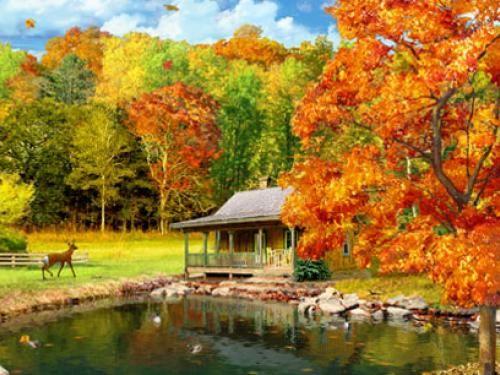Autum Screen Saver Free Fall Screensavers Screensavers Download Fall Screensavers Autumn Scenery Fall Pictures Free Fall Screensavers