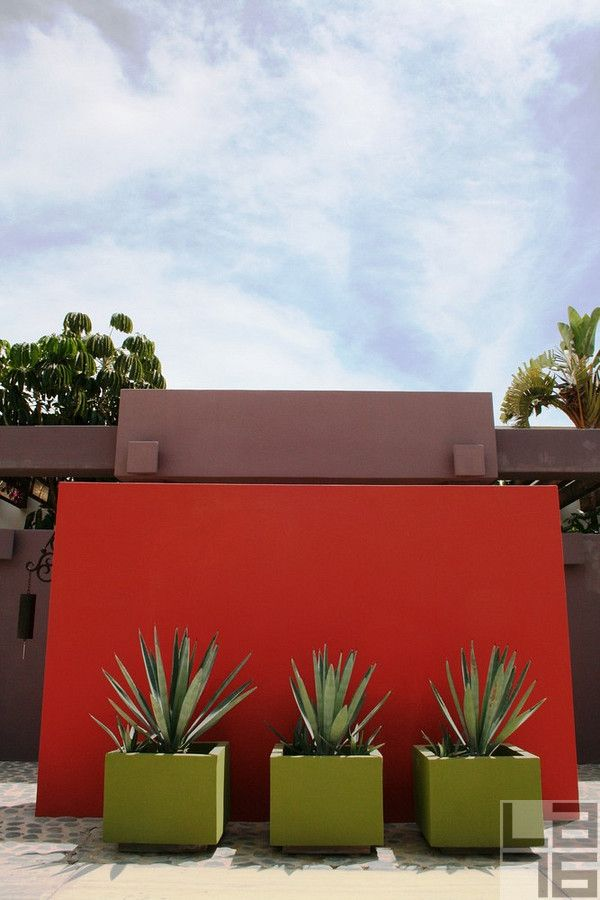 Painted colorful walls with contrasting containers and structural plantings