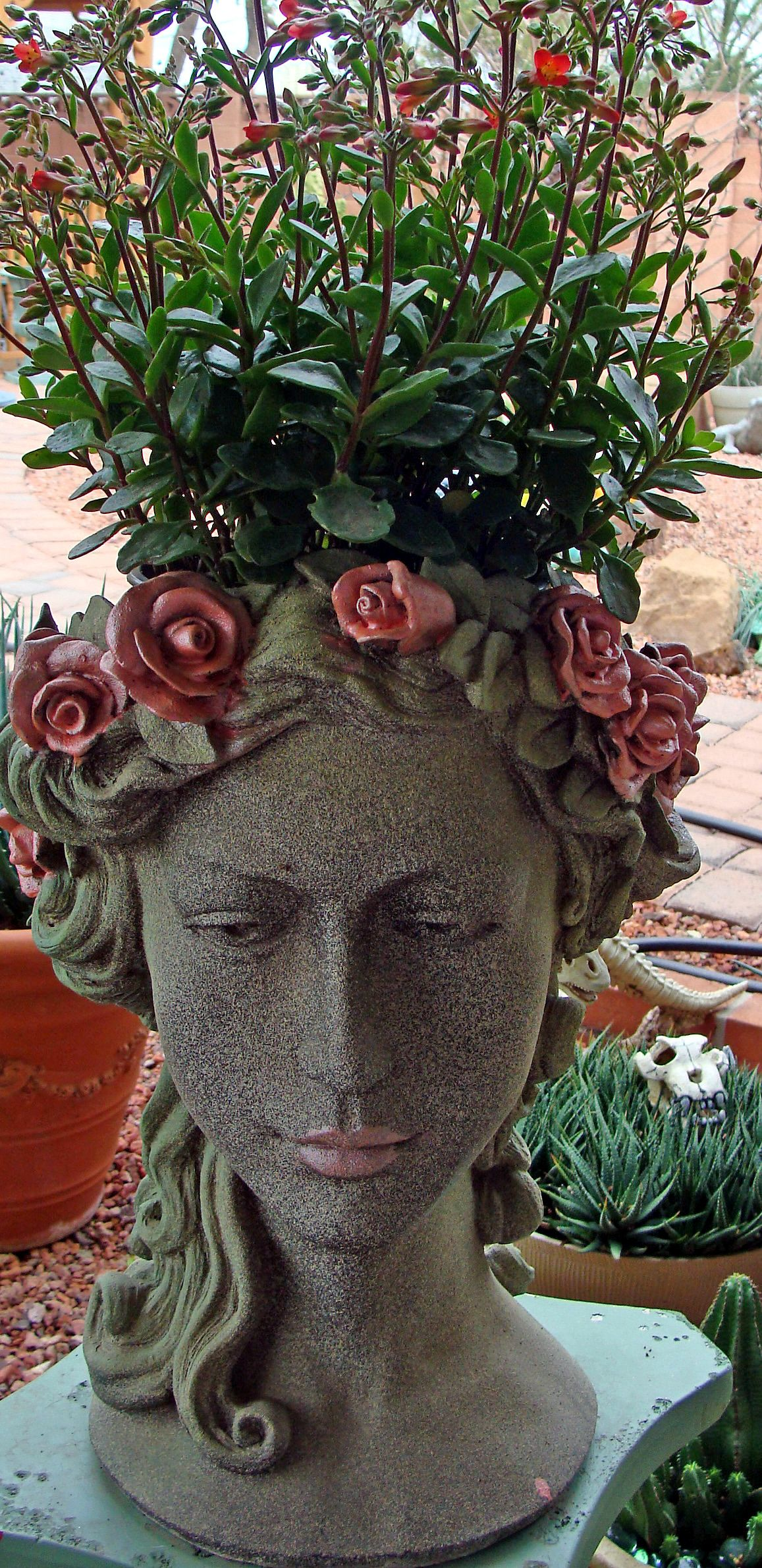 Head Planter With Kalenchoes Head Planters Garden Art 400 x 300