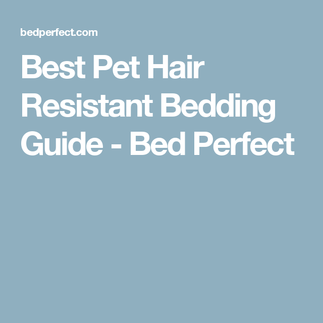 Best Pet Hair Resistant Bedding Guide Bed Perfect Fur Babies Adoption