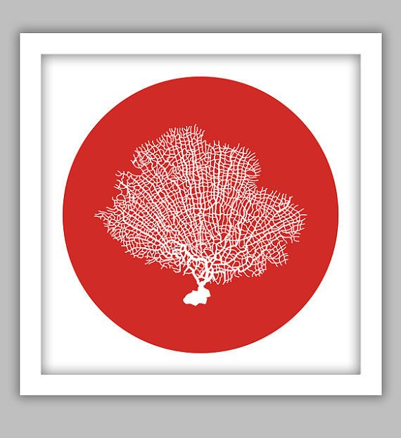 Red Fan Coral Print