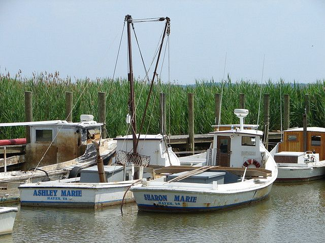 Dead Rise Fishing Boats on James River_6-16-08 ...