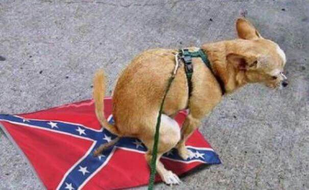 I feel ya Dog. #GoodDogggy