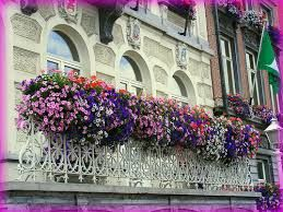 çiçekli balkonlar mutlu apartmanlar ile ilgili görsel sonucu