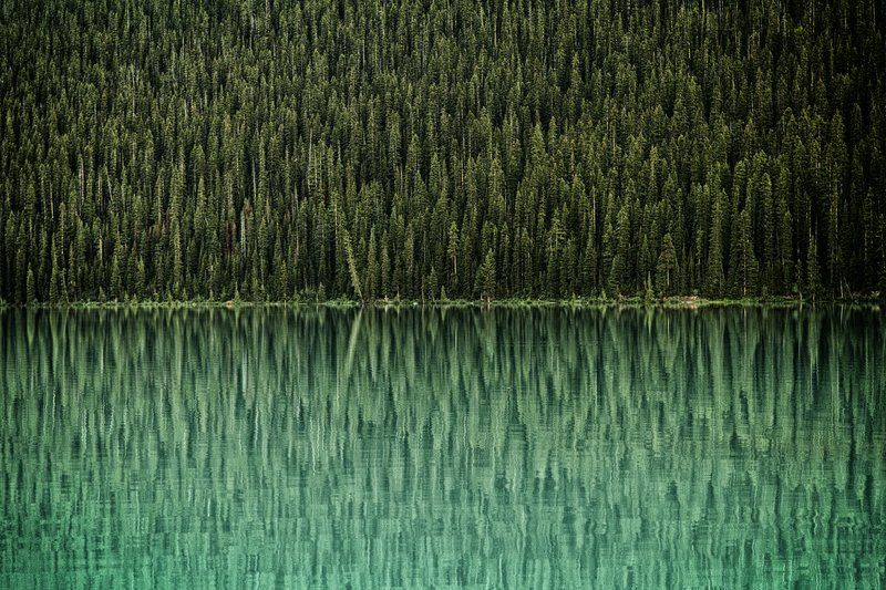 Reflections at Lake Louise, Canada. Photo by JustMike87. #bestof2012
