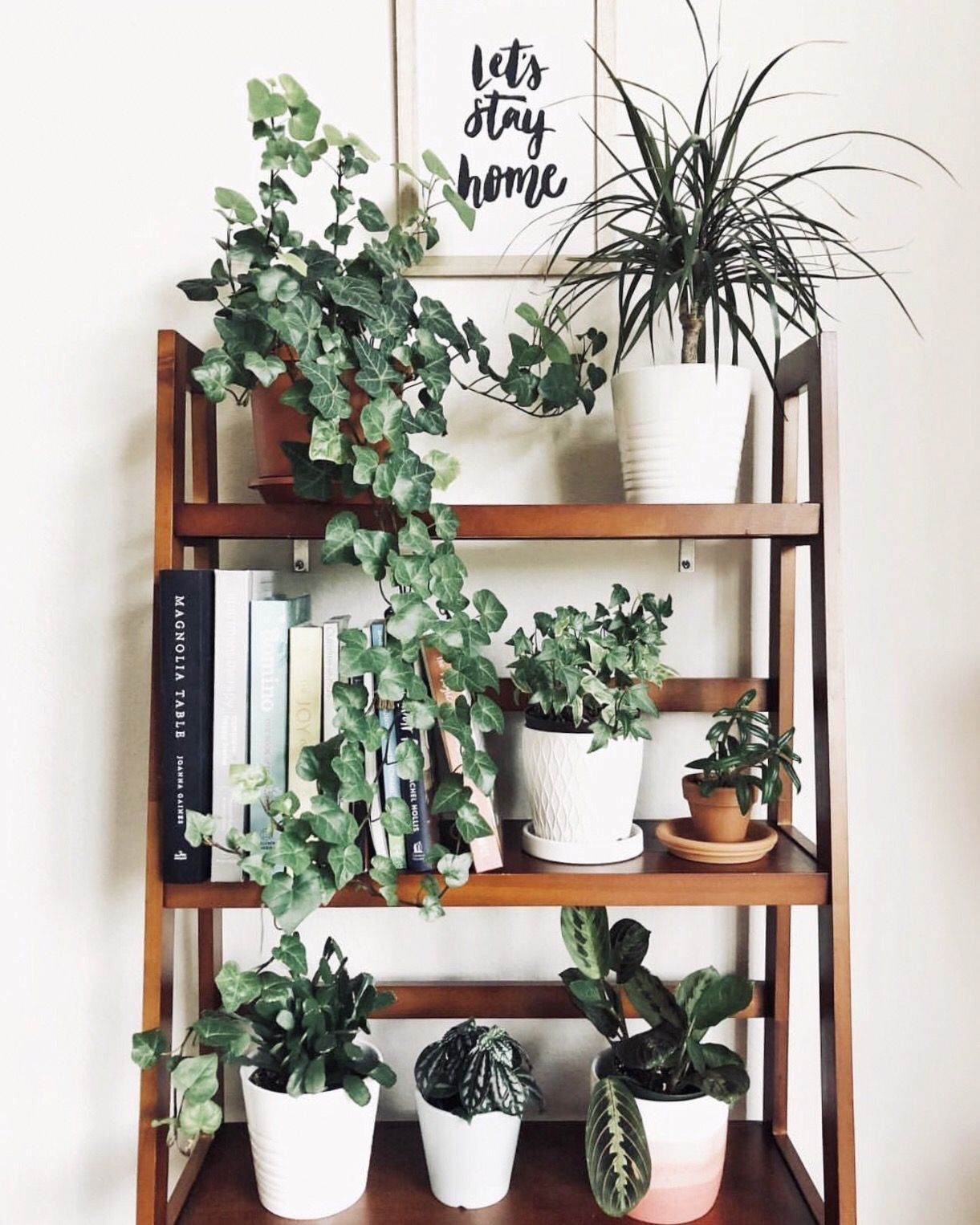 Plantshelfie Decor Plant Decor Home Decor