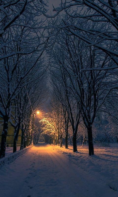 Зимний вечер в городе | Пейзажи, Фотографии, Природа