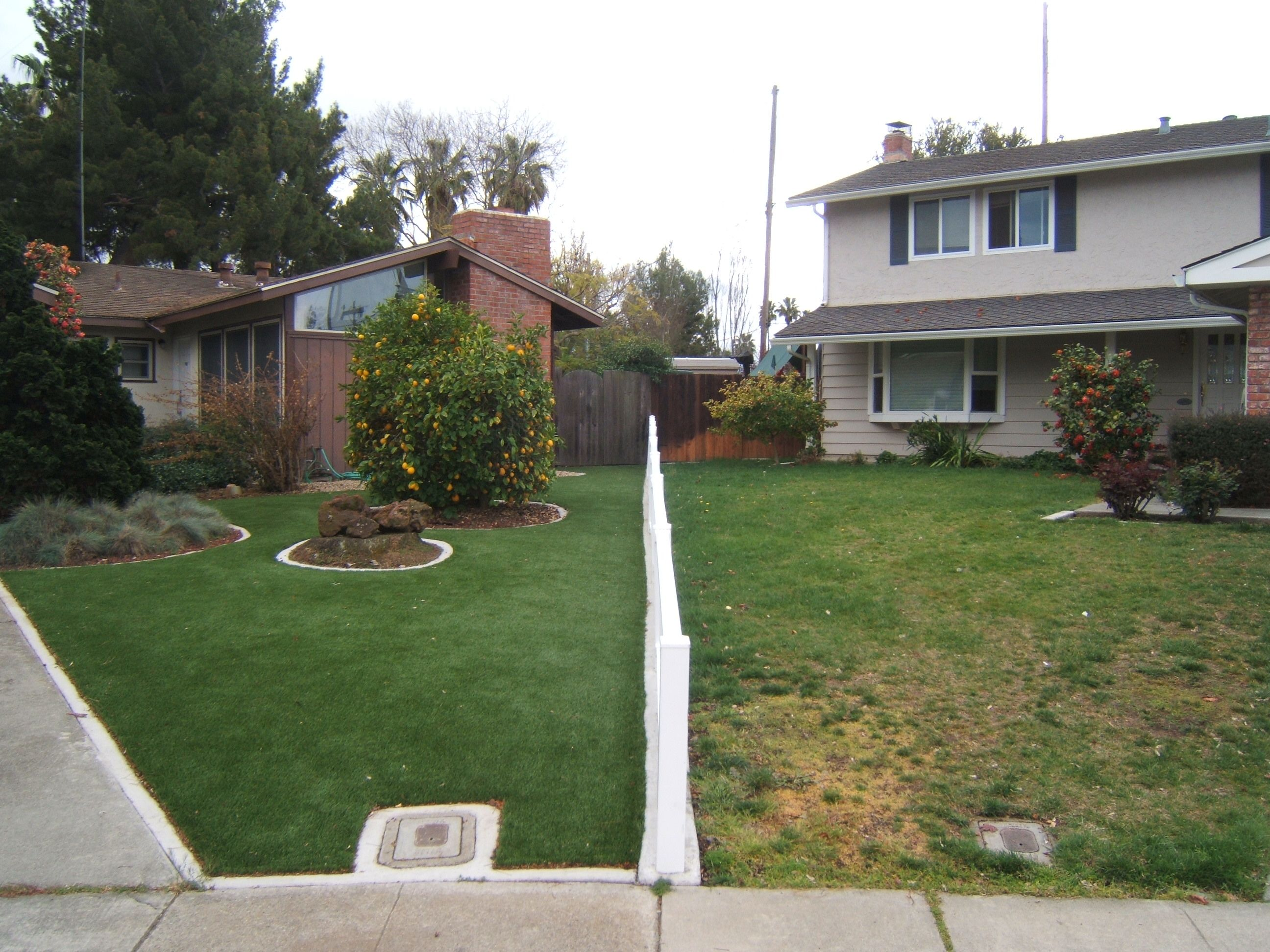 Take about lawn envy. We think the neighbors could use an