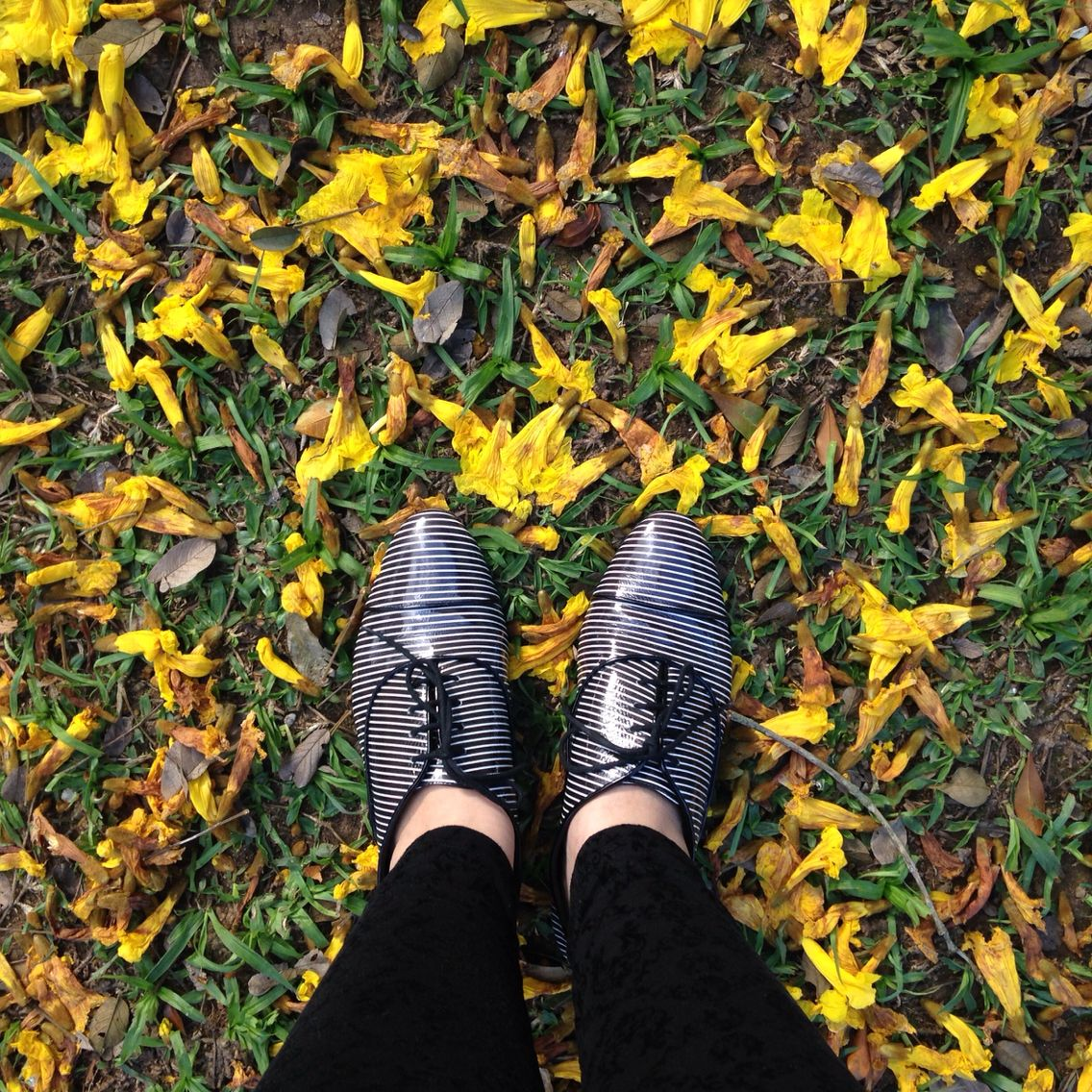 Oxford Shoes + Flowers!