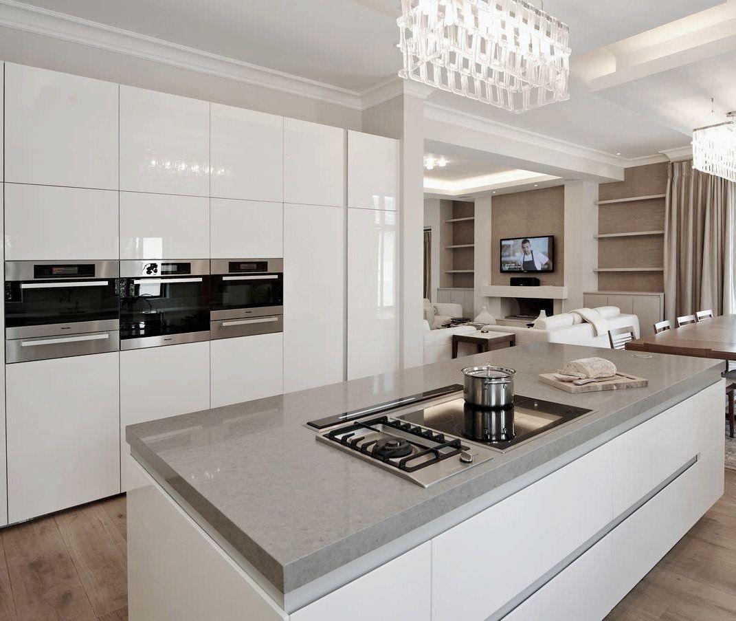Modern Kitchen Cabinet Kitchen Remodel Design Kitchen Design Modern Kitchen Cabinets