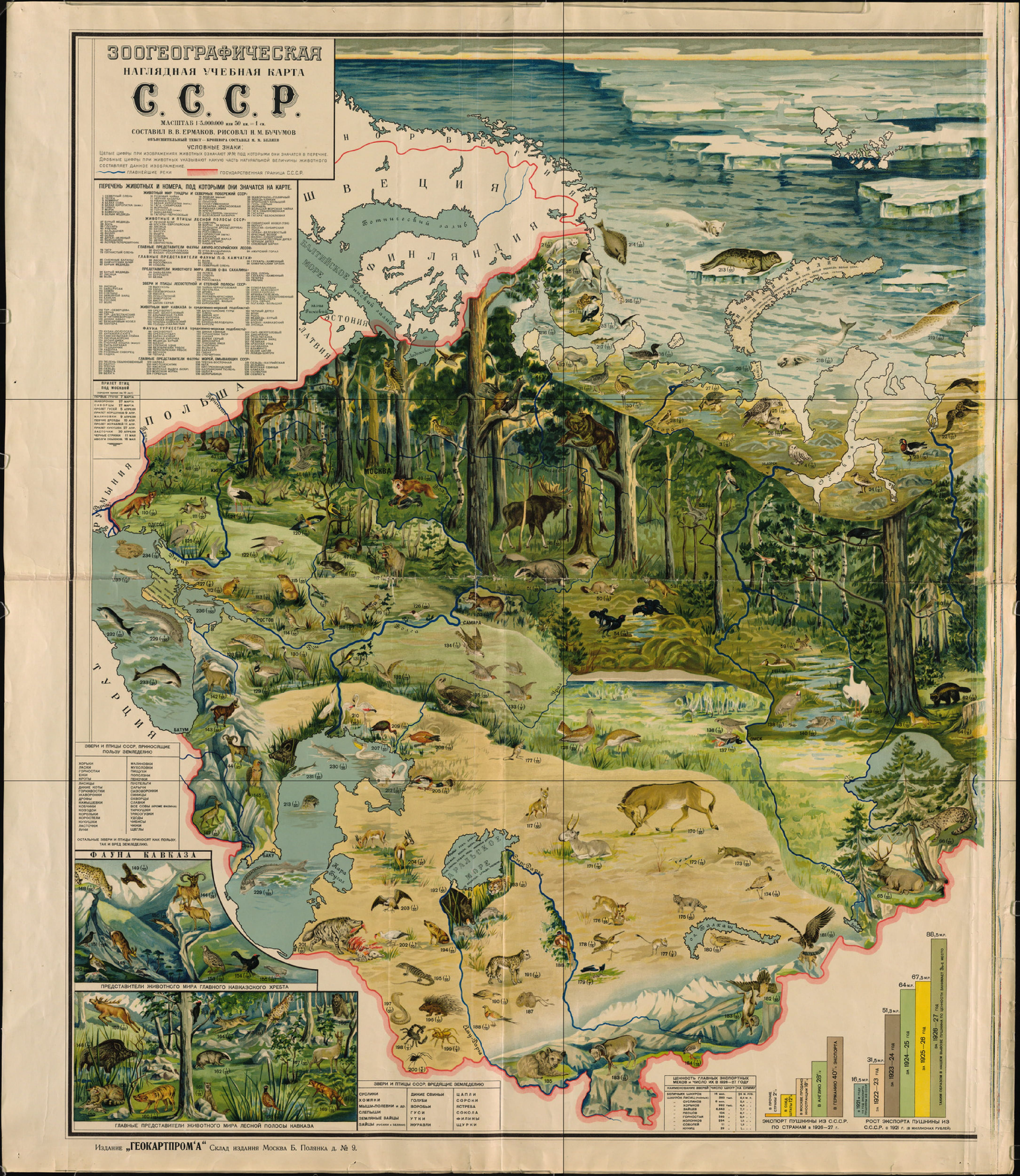 Zoom In On The Natural Environment Of Cold War Ussr