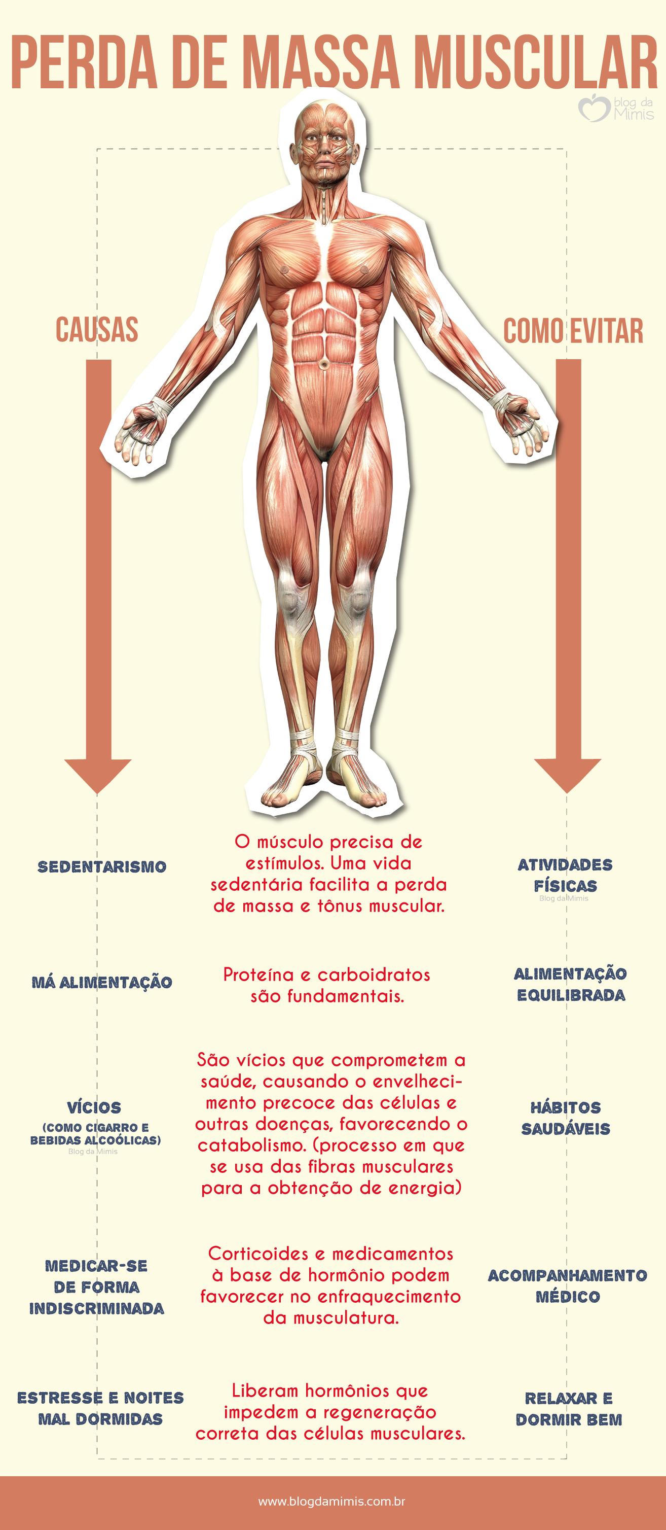 b48a6d1ce Perda de massa muscular  causas e como evitar - Blog da Mimis  blogdamimis   massamuscular  músculo  massamagra  emagrecer  saúde  academia  body
