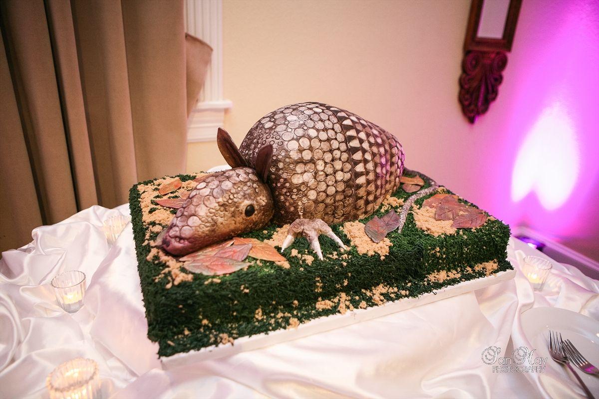 Armadillo cake, very Texan! @Michelle Escamilla