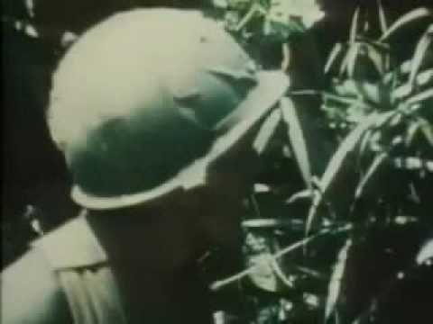 Jimmy Cliff  - Vietnam  -