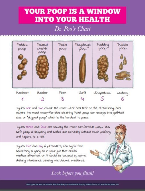 Dr. Poo's family-friendly poop chart