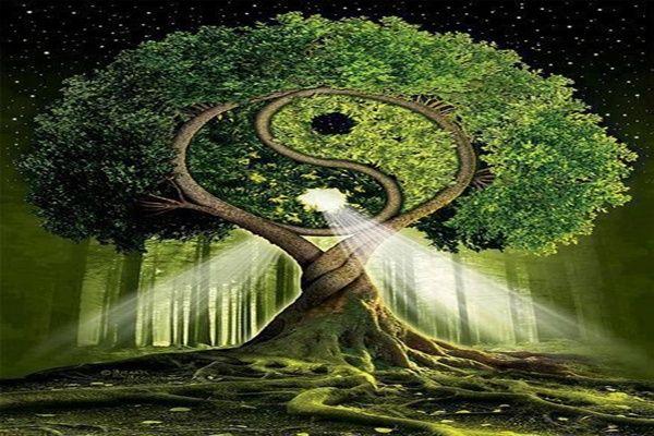La explicación taoísta de la realidad