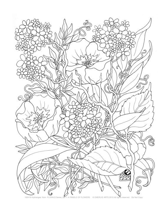 Adult Coloring Pages A Tangle of Flowers Set of 12 by emerlyearts