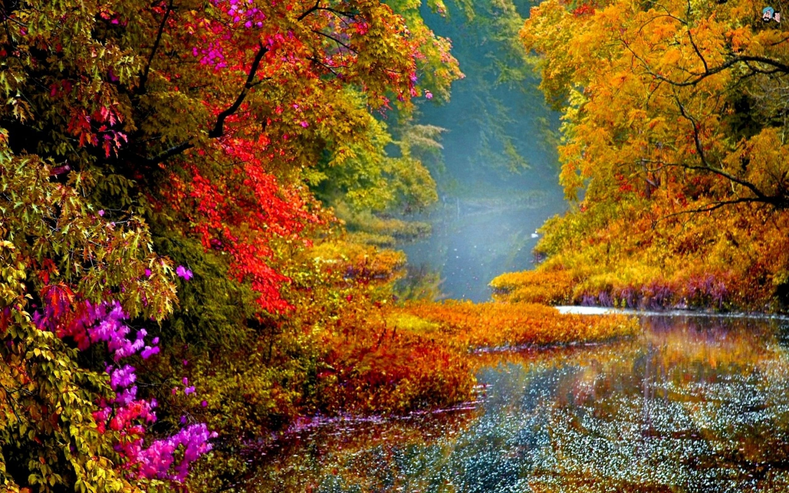 Stevens Creek Mini >> colorful scenery images - Yahoo Image Search Results | Colors | Pinterest | Beautiful places and ...