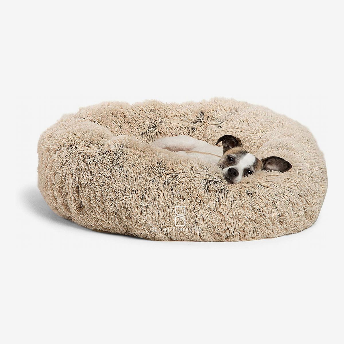The Best Dog Beds, According to Dog Experts in 2020