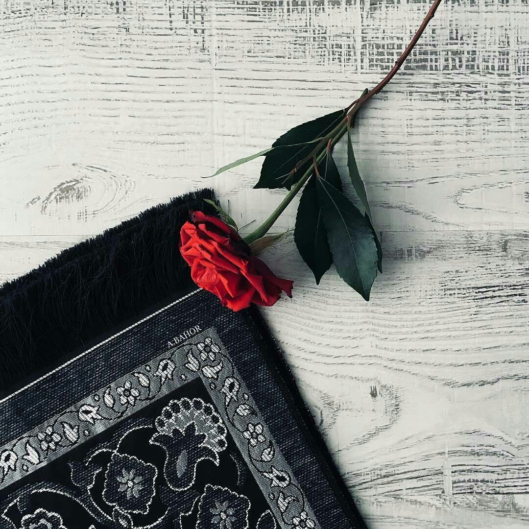 Pin Oleh Iman Chaibi Di استغفر الله وأتوب اليه Bunga Cantik Gambar Mawar