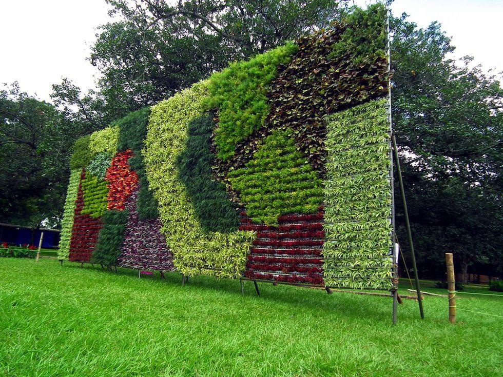 IlPost - Un giardino verticale esposto alla Lalbagh flower show, a ...