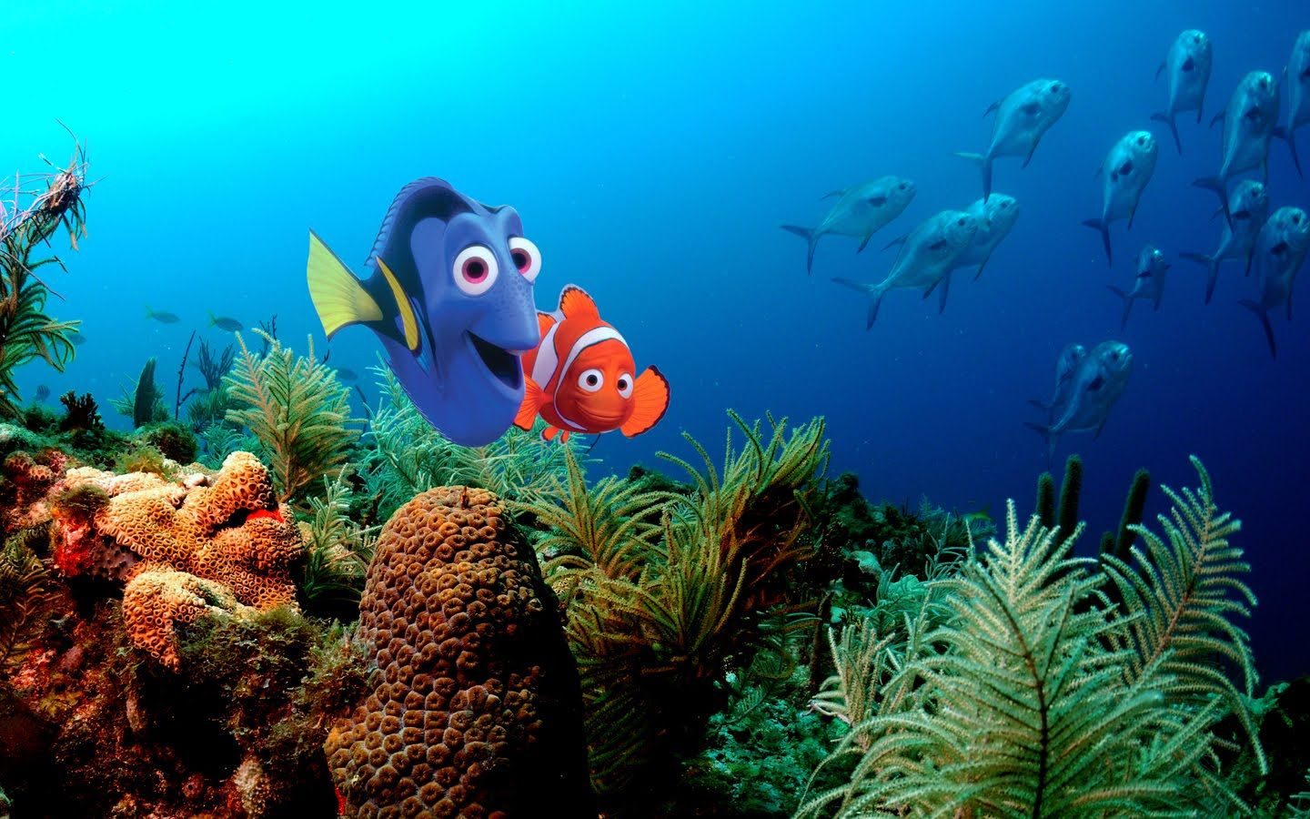 Finding Nemo Cartoon HD Wallpapers Free Download  Proyectos que